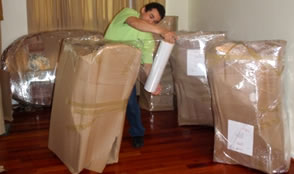 Packing Shrink Wrap Protection